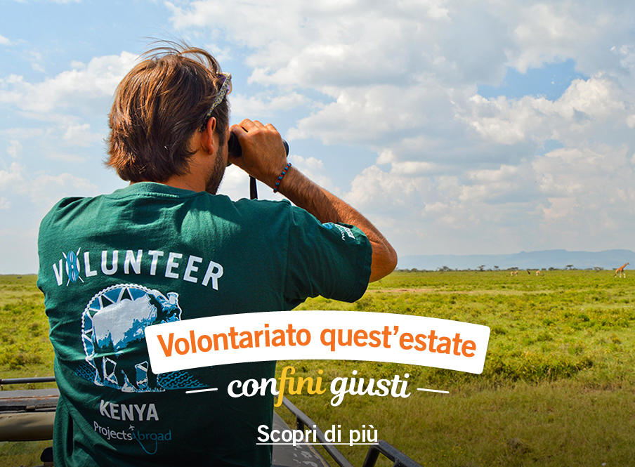Opportunità di volontariato quest'estate