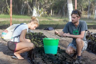 I volontari ambientali Amica Benoit-Limosani e Saul Landrock piantano le mangrovie in Messico
