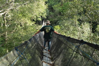 Un volontario del campo di tutela dell'ambiente in Perù cammina su un ponte sospeso nella riserva Taricaya