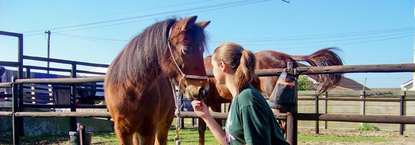 Una volontaria del campo di volontariato animali