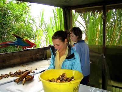 Perù, due volontarie del Campo di Volontariato Ambientale preparano cibo per gli animali locali
