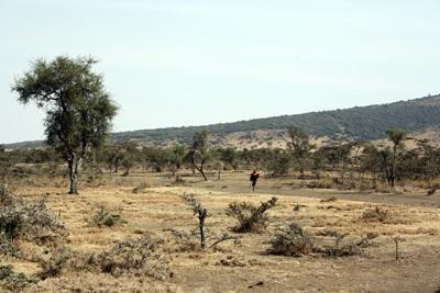 Veduta del territorio Masaai in Tanzania