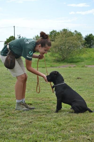 Sandra Madsen, volontaria danese si prende cura degli animali in Argentina