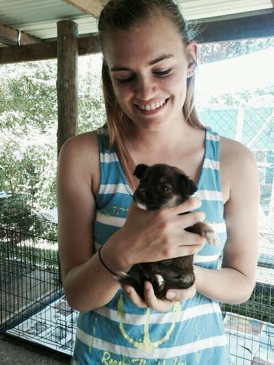 Una volontaria del progetto di volontariato con gli animali alle Samoa si prende cura di un cane