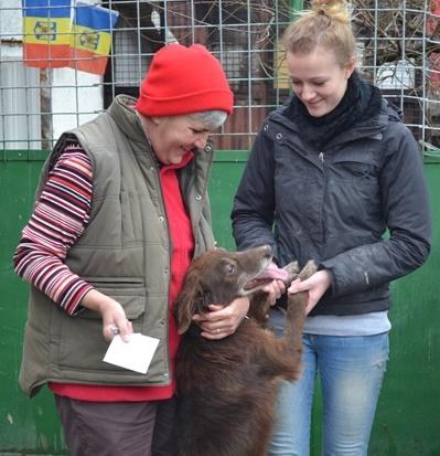 Due volontarie e un cane del progetto di volontariato con gli animali in Romania