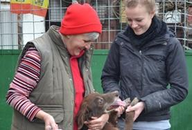 Volunteer Veterinaria & volontariato <br /> con gli animali