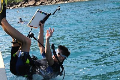 Un volontario ambientale si tuffa in mare per partecipare alle immersioni con lo staff di Projects Abroad