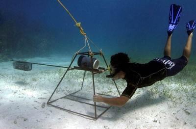 Un volontario durante un'immersione per il progetto di volontariato ambientale alle Fiji