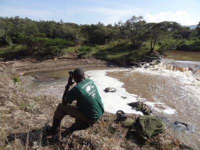 Attività di birdwatching nella riserva Soysambu in Kenia