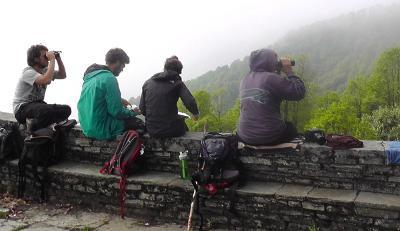 Un gruppo di volontari del progetto di tutela ambientale intenti a scrutare l'orizzonte