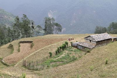 Il progetto ambientale in Nepal