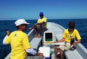 Volunteer Volontariato ambientale