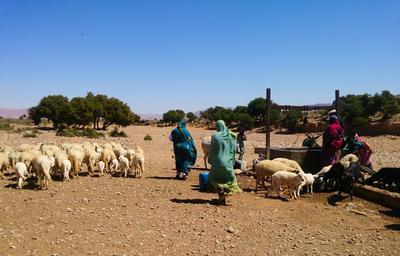 Volontaria del progetto di sviluppo comunitario in Marocco al lavoro nel progetto con i Nomadi