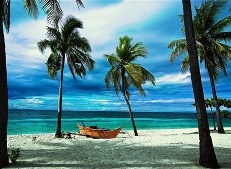 Meravigliosa visita del mare delle Filippine