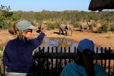 Volontariato in Africa e tutela dell'ambiente con ProjectsAbroad